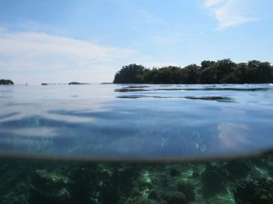 trip pulau pari