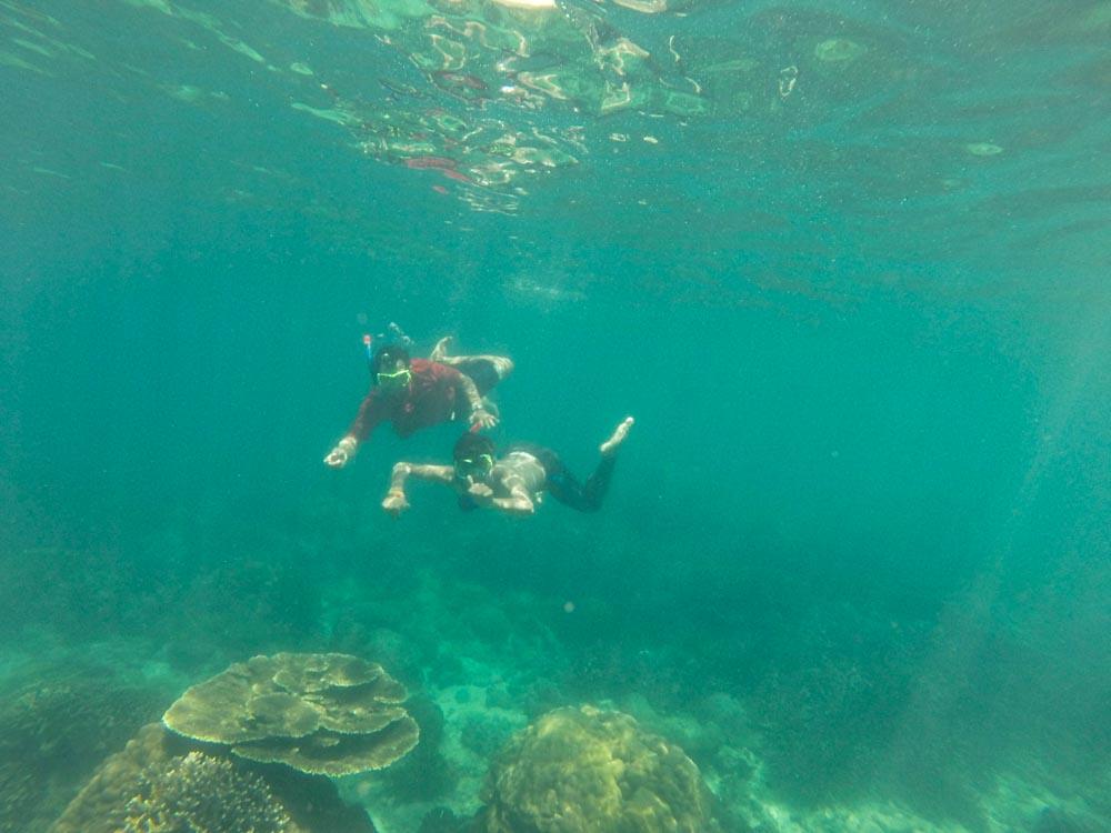 trip pulau karimun jawa murah